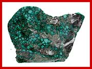 Blue Creek Turquoise From Nevada
