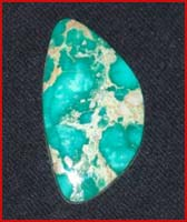 Broken Bow Natural Nevada Variscite
